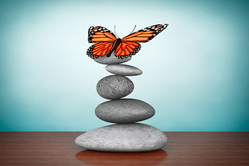 Holistic Therapy for Treating Addiction - stones with butterfly