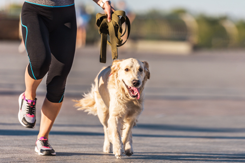 woman jogging with dog - relapse