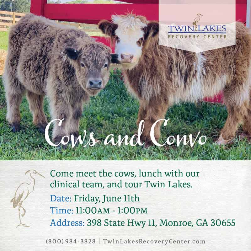 Cows and Conversation - twin lakes recovery center